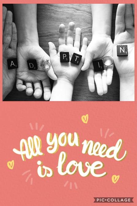 3- adoption