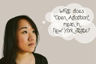 Open_Adoption_New_York_State.jpg