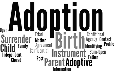 common_adoption_terms.png