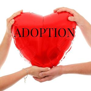 Consider Adoption.jpg