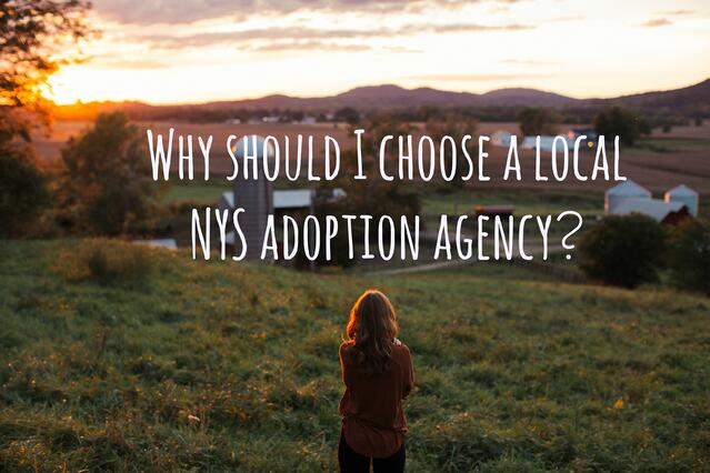 local new york state agency adoption plan