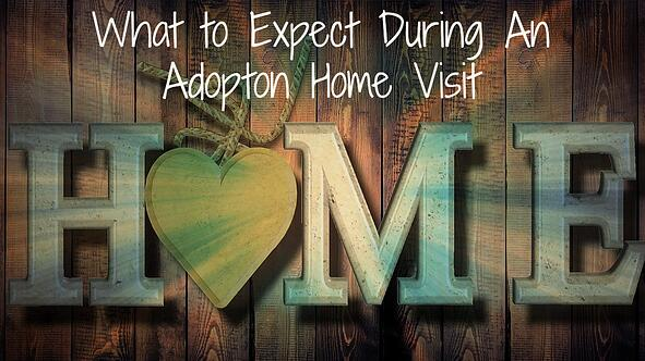 adoption_home_visit_1.jpg
