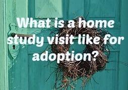 home_study.jpg